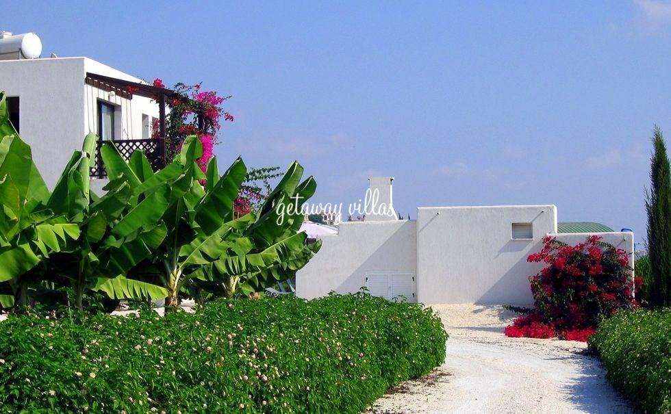 Cyprus Villa-Villa Banana-Gardens-Kissonerga-PAPHOS-DISTRICT-In ...